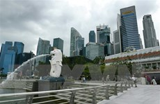 Singapore ra quy định mới về nhập cảnh đối với hành khách từ ASEAN