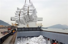 Tạm dừng xuất khẩu gạo từ ngày 24/3 nhằm bảo đảm an ninh lương thực