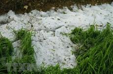 """Bắc Bộ sắp """"đón"""" không khí lạnh tăng cường, nguy cơ cao xảy ra mưa đá"""