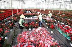 Lâm Đồng bước sang giai đoạn phát triển nhanh, bền vững