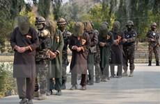 Afghanistan lần đầu thả các tù nhân Taliban theo thỏa thuận hòa bình