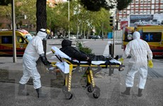 COVID-19: Tây Ban Nha nới lỏng hạn chế, Iran có trên 60% ca hồi phục