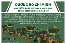Đường Hồ Chí Minh: Sứ mệnh anh hùng trong kháng chiến chống Mỹ