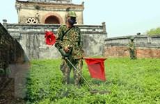 Tiến hành rà soát, xử lý bom, mìn ở khu di tích Kinh thành Huế