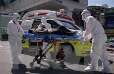 Chuyên gia Hàn Quốc bác khả năng tái nhiễm COVID-19 sau khi bình phục