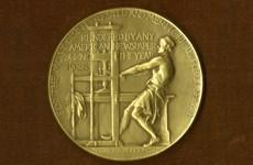 Giải thưởng Pulitzers 2020 chống lại những bất công của xã hội