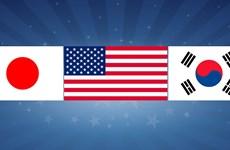 Hàn Quốc-Mỹ-Nhật Bản tổ chức Đối thoại quốc phòng 3 bên
