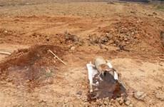 Thừa Thiên-Huế: Ngư dân phát hiện quả bom nặng 2 tạ khi kéo lưới