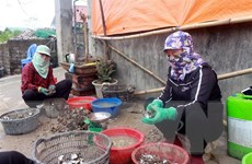 Người dân Quảng Ninh có thể tự tra cứu tin hỗ trợ khó khăn do COVID-19