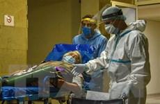 Dịch COVID-19: Thế giới đã ghi nhận hơn 6 triệu ca nhiễm
