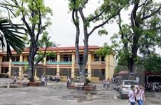 Hà Nội cần thống nhất trong quản lý cây xanh ở trường học