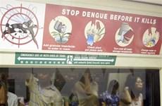 Singapore đối mặt với nguy cơ bùng dịch sốt xuất huyết