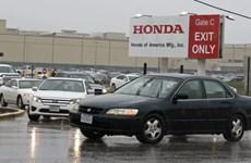 Nhiều nhà máy của Honda tại Thổ Nhĩ Kỳ, Brazil, Ấn Độ ngừng hoạt động