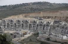 Israel-Mỹ thảo luận kế hoạch sáp nhập khu vực chiếm đóng ở Bờ Tây