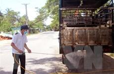 Có 8 doanh nghiệp đủ điều kiện nhập khẩu lợn sống từ Thái Lan