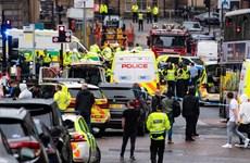 Scotland: Đâm dao làm 3 người tử vong, nghi can bị bắn chết