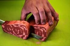 Miếng thịt bò chay giống hệt như thật được làm từ công nghệ in 3D