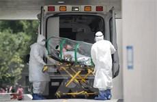 Dịch bệnh COVID-19: Tình hình nghiêm trọng tại châu Mỹ