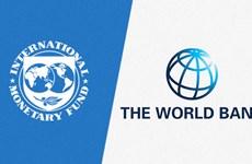 Hội nghị mùa Thu IMF-WB sẽ được tổ chức theo hình thức trực tuyến