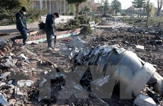 Iran đã gửi hộp đen của máy bay Ukraine bị bắn nhầm tới Pháp