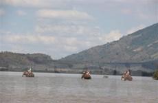Đắk Lắk: Dừng hoạt động cưỡi voi sau sự cố 2 du khách bị ngã