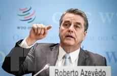 Tổng Giám đốc Roberto Azevedo: WTO phải đối mặt với áp lực khủng khiếp
