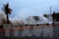 Thực hiện nghiêm Công điện của Thủ tướng về ứng phó với bão số 2