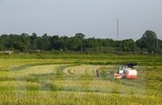 Cơ khí nông nghiệp: Việt Nam đang dần tự đánh mất vị thế