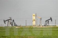 Mỹ lợi đủ đường khi thúc đẩy thỏa thuận khai thác dầu mỏ tại Syria