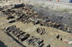 Nhật Bản: khai quật 1.500 bộ hài cốt tại nghĩa trang Thành cổ Osaka