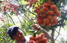 Chuyên gia kiểm dịch xuất khẩu trái cây Hoa Kỳ sắp tới Việt Nam