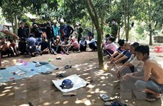An Giang: Triệt xóa sới bạc ở huyện cù lao, bắt giữ 31 đối tượng