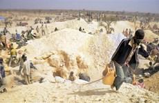 Hoạt động khai thác bất hợp pháp gia tăng khi giá vàng leo thang
