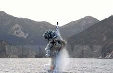 38 North: Có dấu hiệu Triều Tiên sắp thử tên lửa đạn đạo từ tàu ngầm