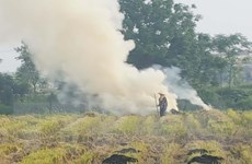 Tăng trách nhiệm trong ngăn chặn đốt rơm rạ tại khu vực sân bay