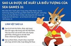 Đề xuất sao la là linh vật biểu tượng của SEA Games 31