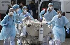 Số ca tử vong do COVID ở nhiều nước có thể vượt xa thống kê chính thức