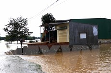 Áp thấp nhiệt đới gây mưa to từ Nghệ An đến Thừa Thiên-Huế