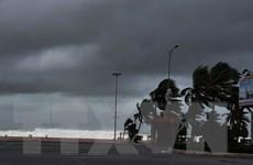 Những hình ảnh đầu tiên khi bão số 9 đổ bộ vào Đà Nẵng