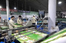 Kinh tế Việt Nam với những kỳ vọng phục hồi trong quý III