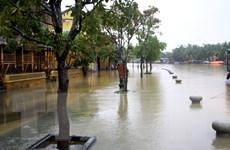 Ngày 2/11, không khí lạnh gây mưa ở Bắc Bộ và Bắc Trung Bộ