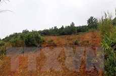 Quảng Ngãi: Di dời 75 hộ dân ra khỏi khu vực nguy cơ sạt lở núi
