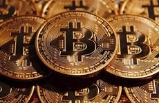 Bitcoin tăng giá trước những diễn biến của cuộc bầu cử tại Mỹ