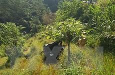 Hà Giang: Bàn giao 3 thi thể nạn nhân trong vụ xe Uoát lao xuống vực