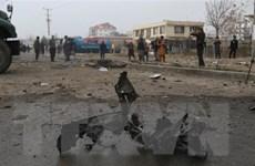 Đánh bom tại Afghanistan khiến nhiều người thiệt mạng