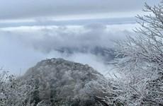 Đảm bảo cuộc sống của người dân trong thời tiết băng giá ở miền núi