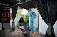 Đức xác minh việc 10 người tử vong sau khi tiêm vắcxin ngừa COVID-19