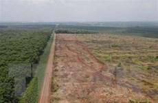 Sẽ xây mới 4 tuyến đường kết nối sân bay Long Thành