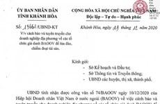 Kiên Giang: Giả danh Hiệp hội Doanh nhân Việt ở nước ngoài để lừa đảo