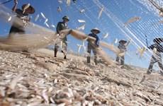 Phát triển bền vững kinh tế biển trên nền tảng tăng trưởng xanh
